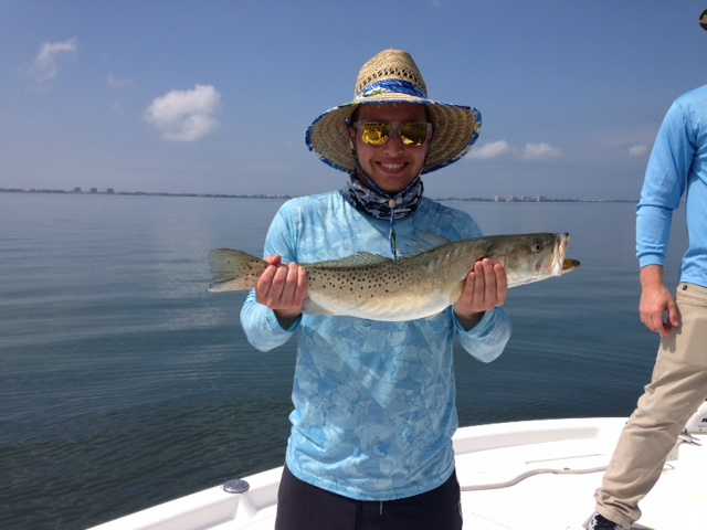Inshore addict charters fishing in sarasota for Sarasota bay fishing report